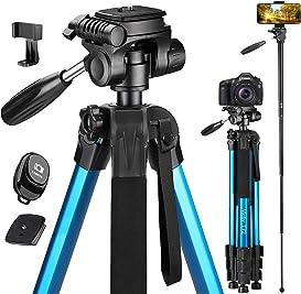 Explore camera plates for tripods