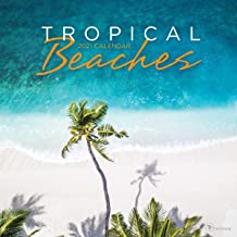 "TF PUBLISHING 2021 Tropical Beaches Monthly Wall Calendar - Appointment Tracker - Contacts and Notes - Home or Office Planning - Gloss 12""x12"""