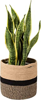 Best small planter basket Reviews