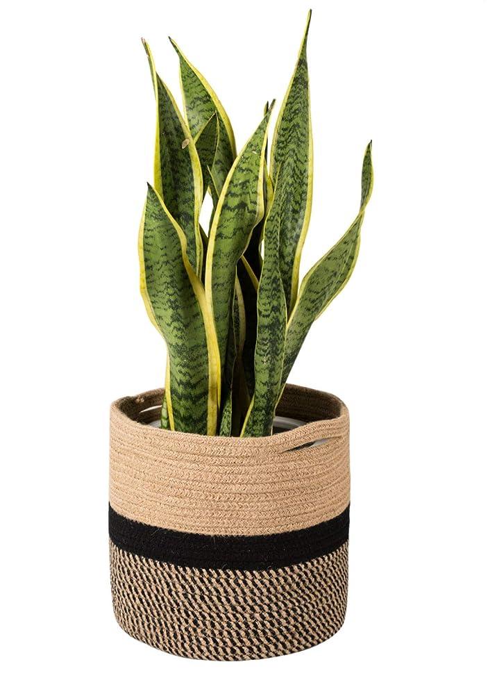 TIMEYARD Sturdy Jute Rope Plant Basket Modern Woven Basket for 10