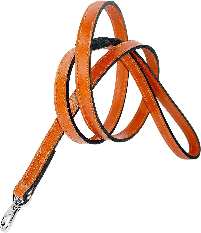 Hartman and pink Collars Nickel Snap Harnesses  Leads, 3 4inch, orange