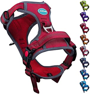 ThinkPet No Pull Breathable Sport Dog Harness - Reflective Padded Oxford Nylon Safety Adjustable Easy on and off Vest, Back/Front Clip Handle Outdoor and Training Small Medium Dogs(Small Red)