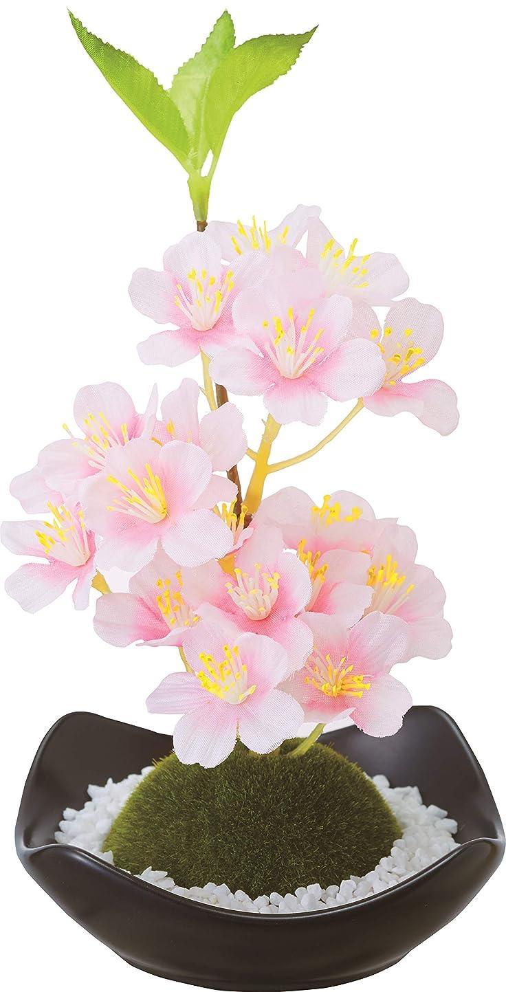 詳細に害中でカメヤマキャンドルハウス 苔玉フレグランス 桜