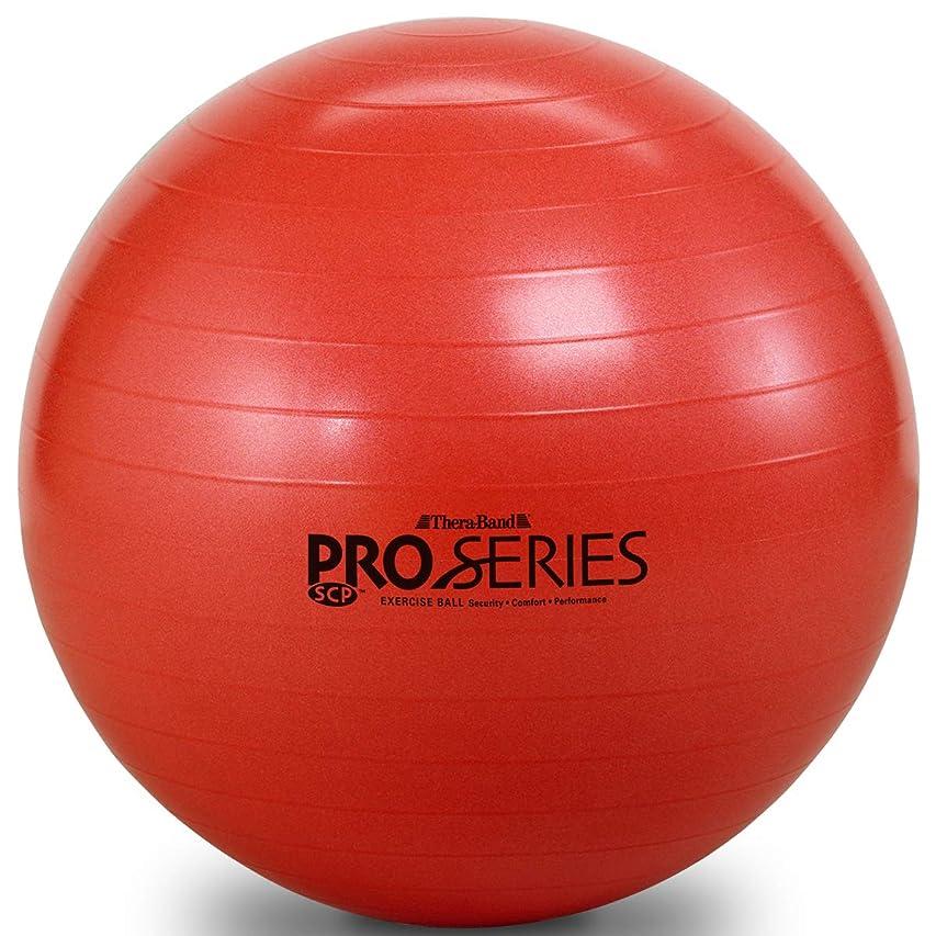 オーナメント騒狂信者D&M(ディーアンドエム) エクササイズボール SDS-55 レッド SDS-55