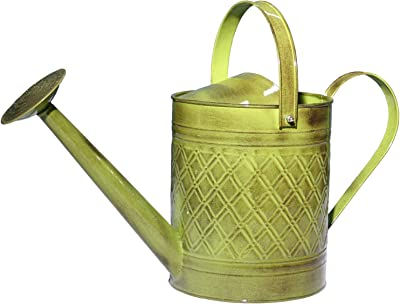 Robert Allen Home & Garden Robert Allen MPT01500 Wexley Metal, Tansy Green 2 Gallon Watering can