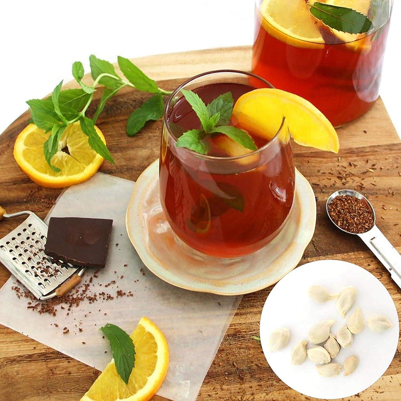 Benoon Semillas De árbol De Limón, 1 Bolsa Semillas De árbol De Limón Mini Semillas De Frutas Naturales Versátiles Para Patio Semillas de limonero