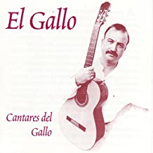 Best canto de gallo Reviews