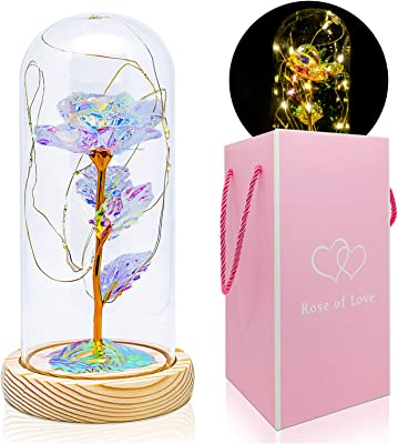 BCARICH Beauty and The Beast Rose Kit, Galaxy Rose in Glass Dome with LED Strip Light, Forever Rose Flower Gift for Women, Crystal Rose Lamp for Christmas, Valentine's Day, Anniversary and Birthday