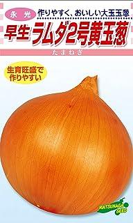 松永種苗 永光 早生 ラムダ2号黄玉葱 (タマネギ) 小袋5ml