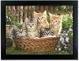 BANBERRY DESIGNS Kittens 3D Holographic Framed Picture - Five Kittens in a Basket in a Yard