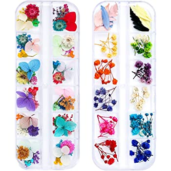 iFancer 108 Pcs Dried Flowers Nail Art 62 Colors 3D Dry Flowers for Nails 2 Boxes Small Tiny Dried Flowers for Nail Art Little Pressed Real Natural Flower Nail Art Design Decoration Supplies
