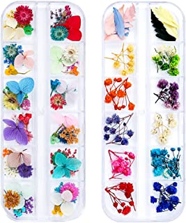 iFancer 108 Pcs Dried Flowers for Resin Nail Art 62 Colors 3D Dry Flowers for Nails 2 Boxes Small Tiny Dried Flowers for N...