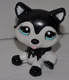 Husky #2246 (Black & White, Blue Eyes) (Target Exclusive) - Littlest Pet Shop (Retired) Collector Toy - LPS Collectible Replacement Single Figure - Loose (OOP Out of Package & Print)