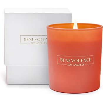 Premium Scented Candles, Soy Candles | Luxury Candles with A Floral Scent of Hibiscus & Palmwood | 45 Hour Burn, Long Lasting, Highly Scented, & All Natural Aromatherapy Candle with Pink Glass Jar