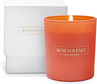 Premium Scented Candles, Soy Candles | Luxury Candles with A Floral Scent of Hibiscus & Palmwood | 45 Hour Burn, Long Last...