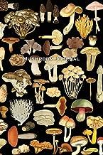 Best Mushroom Notebook of 2020 – Top Rated & Reviewed