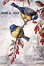 2020 & 2021 Two Year Weekly Planner | Appointment Book Gift | Two-Year Agenda Notebook For Bird Lover: Nature Painting Cover | Month Calendar: 2 Years ... | Day Log For Personal Goals, Schedule, etc.