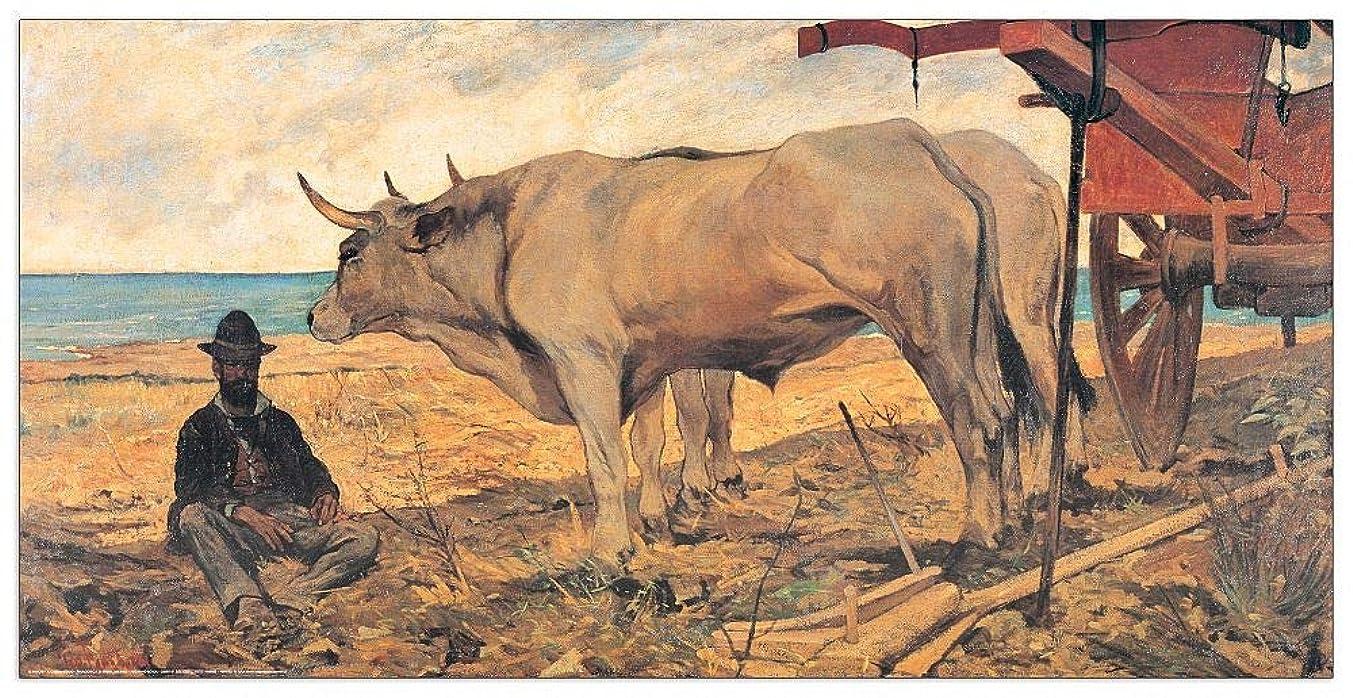 Artopweb TW21565 Decorative Panel 39.5x19.5 Inch Multicolored