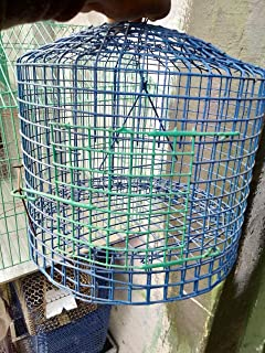Parrot Cage for Birds(Set of 7)