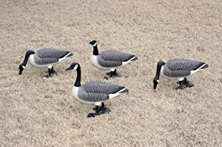 Best canada goose statue Reviews