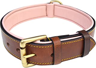 luxury leather dog collars and leads