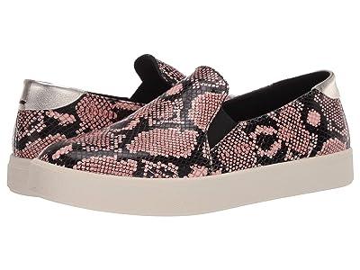 Cole Haan Grandpro Spectator 2.0 Slip-On Sneaker (Exotic Snake Print Burnt Coral/Black/Ivory) Women