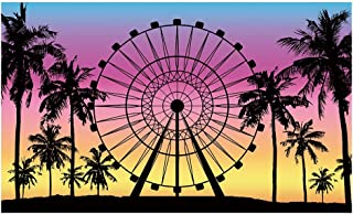 Funnytree Fotohintergrund mit Riesenrad für Sommertage, Palme, Sonnenuntergang, tropische Hochzeit, Party, Dekoration, Banner, Requisite, 152 x 91 cm