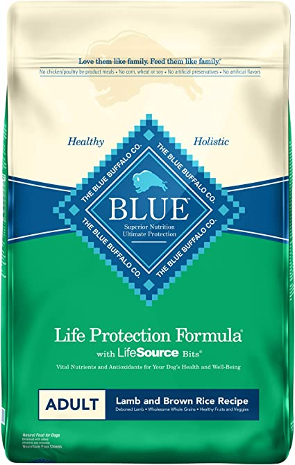 Blue Buffalo Life Protection Formula Natural Adult Dry Dog Food | Chewy