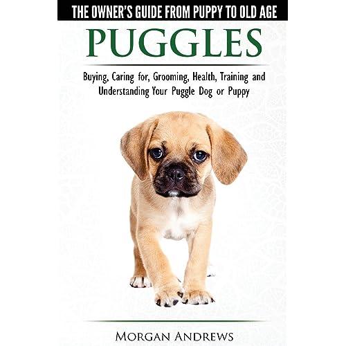 Puggle Gifts: Amazon com