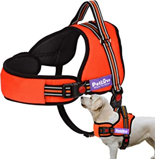 PetLove Dog Harness, Soft Leash Padded No Pull Dog Harness with All Kinds of Size (XSmall, Orange)