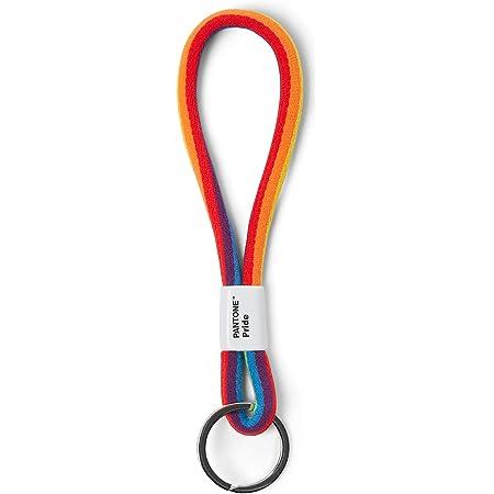 Pantone Porte-clés design avec chaîne courte pour poignet, robuste et coloré, Pride Colors, nylon, court.