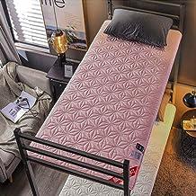 Sleeping Tatami Floor Mat,Futon Tatami Mattress Pad,Soft Student Dormitory Mattress,Cotton Collapsible Futon Mattress,Anti...