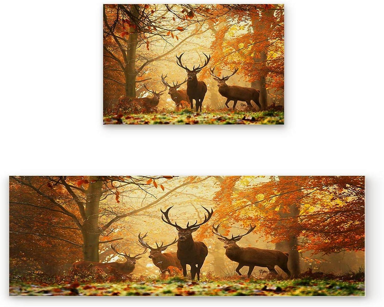 SODIKA Non Slip Kitchen Rug Set 2 Piece, Floor Mat Carpet Runner,Deer in The Forest (19.7x31.5in+19.7x47.2 inches)