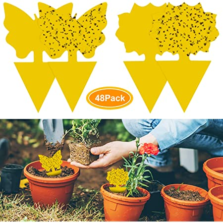 YHmall 48Pcs plug-in fly trap yellow plates yellow sticker protection plant from the mosquito aphids, leaf flies and vermin, ideal for plants on the balcony or in the garden