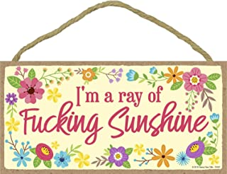 I'm a Ray of Fucking Sunshine - Inappropriate Funny 5 x 10 inch Hanging, Wall Art, Decorative Wood Sign Home Decor