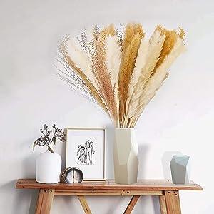 EVOLUX Pampas Grass Decor,60 Pcs Natural Dried Pampas Grass|15 Pcs White & 15 Pcs Beige & 30 Pcs Reed Grass,17
