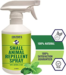 All Natural Rodent Repellent Spray- Perfect for: Racoons, Rats, Squirrels, Rabbits, Skunks, Gophers and Many Small Animals. Indoor and Outdoor Deterrent- Garage, Yard, Trash cans Car Engine(32)