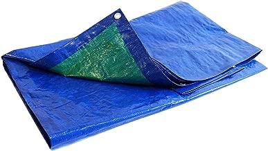 Lot de 50 b/âches de protection pour usage multiusage 2,5 x 4 m 40 m/μ 10 m/²