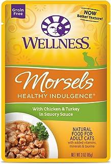 ウェルネス キャットフード 成猫用(1歳以上) ヘルシーインダルジェンス(穀物不使用) 香るとろみスープ仕立て チキン&ターキー 85g×12袋 (ケース販売)