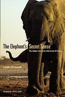 The Elephant`s Secret Sense – The Hidden Life of the Wild Herds of Africa