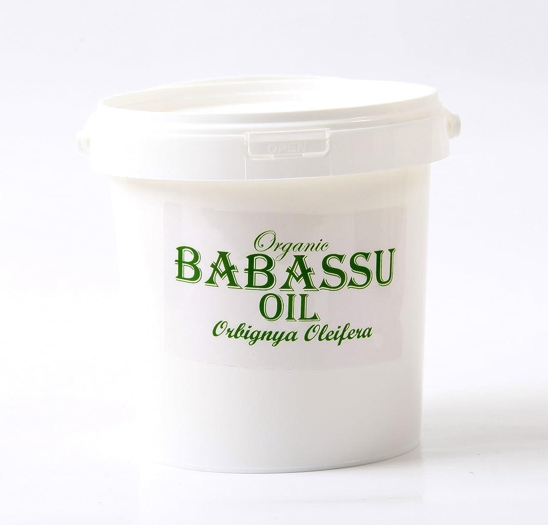 非難ポータル活性化Mystic Moments | Babassu Refined Organic Carrier Oil - 1Kg - 100% Pure