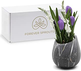 Forever Sprouts Premium Silk Purple Tulip Flowers in a Compact Ceramic Pot with Marbled Effect - Luxurious Artificial Plants for Home Decor and Table Centerpieces, Offices, Shelves, Decorations.