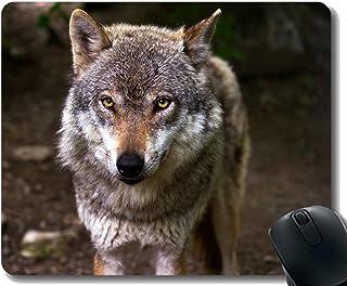 Yanteng Gaming Mouse Pad Custom, Stare Wildlife Defocused Wolf Home Office Accesorios de computadora Alfombrillas