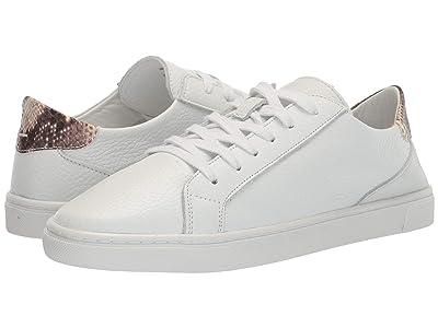 Steve Madden Glove Sneaker (Natural Snake) Women