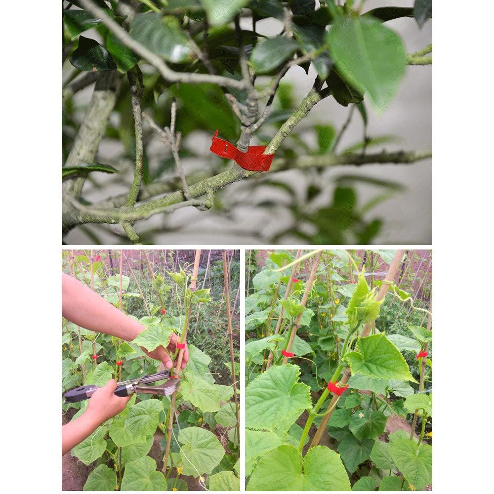 Desconocido Cintas para Atar Plantas de jardín, Herramienta para ...