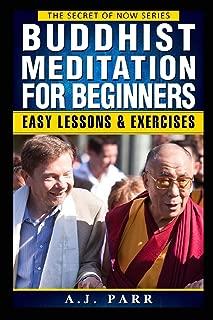 Buddhist Meditation for Beginners: (Understanding Dalai Lama, Eckhart Tolle, Jiddu Krishnamurti & Alan Watts) (The Secret of Now) (Volume 2)