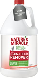 Nature's Miracle Melon Burst Stain and Odor Remover Gallon