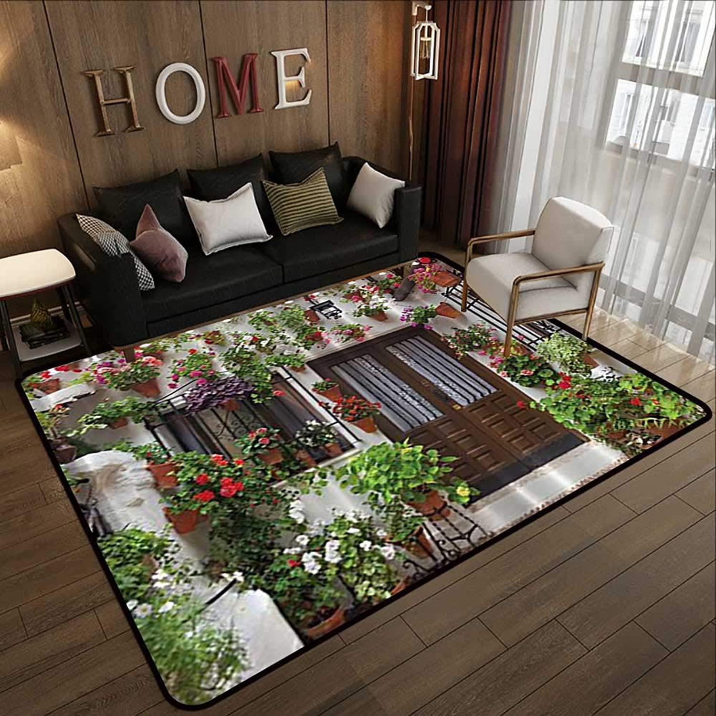 Modern Area Rug with Non-Skid,Spanish House Print 35 x 59  Indoor Super Absorbs Doormat