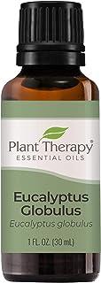 Plant Therapy Eucalyptus Globulus Essential Oil 30 mL (1 oz) 100% Pure, Undiluted, Therapeutic Grade