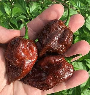 Kraken Scorpion Pepper Premium Seed Packet